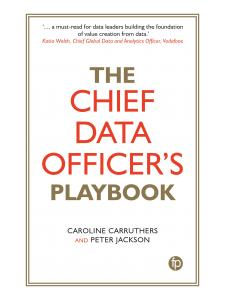 Image for The Chief Data Officer's Playbook