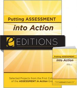 Putting Assessment into Action: Selected Projects from the First Cohort of the Assessment in Action Grant—print/e-book Bundle