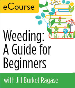 Image for Weeding: A Guide for Beginners eCourse