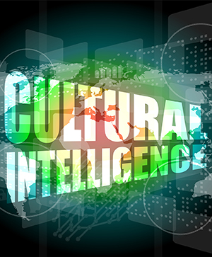Image for Building CQ: Fostering Our Cultural Intelligence—INDIVIDUAL USER